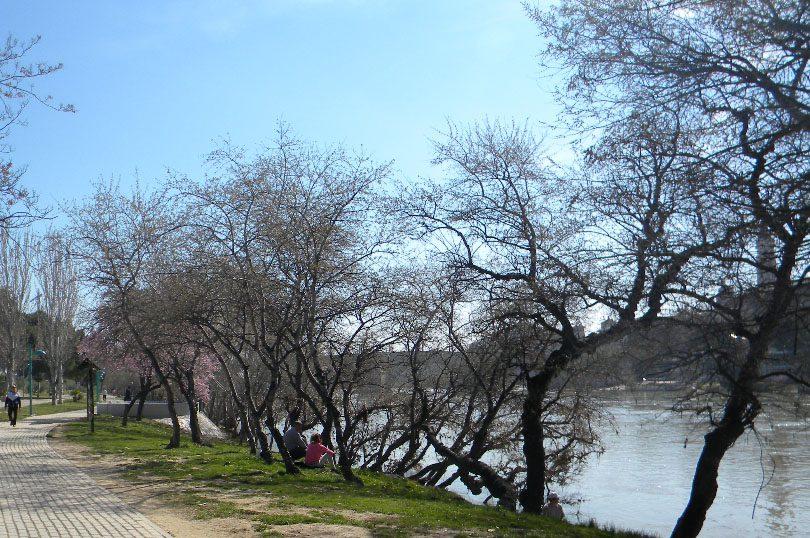 El Partido Aragonés alerta de la intención del Gobierno central de declarar reservas fluviales saltándose las leyes aragonesas