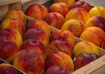 El PAR-Bajo Cinca reclama la aplicación urgente de las medidas planteadas frente a la crisis de precios de la fruta