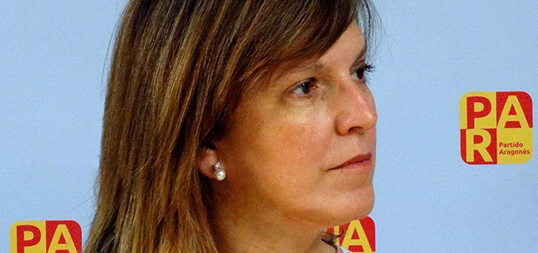 El PAR solicita la comparecencia del ministro de Fomento en el Senado para reclamarle agilidad en la obra de la N-260 Ventamillo-Campo