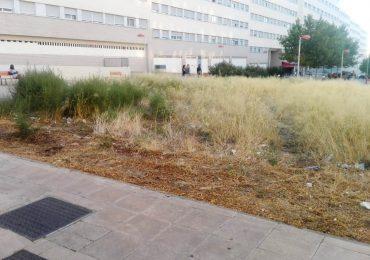 PAR Zaragoza reclama acondicionamiento del entorno del colegio San Jorge, en Valdespartera