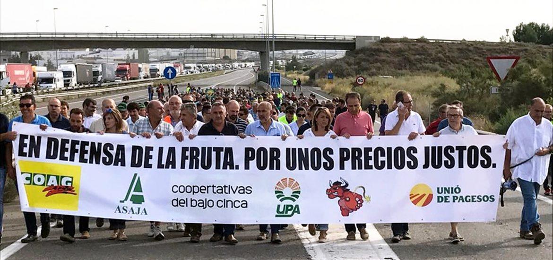 El PAR plantea en la DPH un rotundo apoyo y la reivindicación de medidas a favor del sector aragonés de la fruta dulce