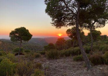 El Comité comarcal del PAR defiende el potencial de desarrollo y bienestar en Los Monegros antes que las restricciones de un posible parque nacional